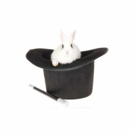 rabbit in hat
